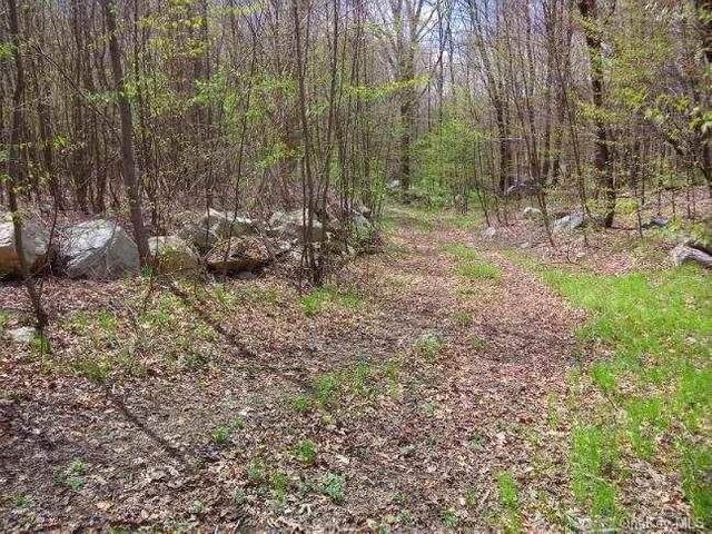 474-A Ludingtonville Road, Kent, NY 14477 (MLS #H6053287) :: William Raveis Legends Realty Group