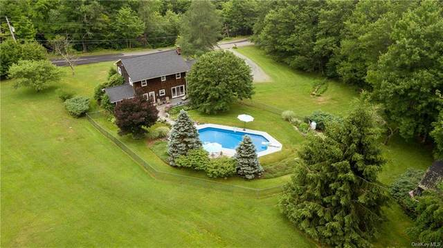 175 Lily Pond Road, Liberty Town, NY 12768 (MLS #H6053365) :: The Home Team