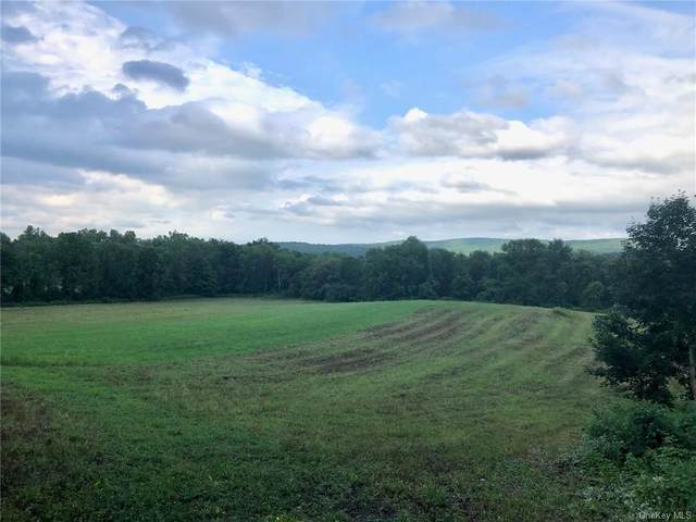 326 Cornwall Hill Road, Patterson, NY 12563 (MLS #H6053888) :: William Raveis Legends Realty Group