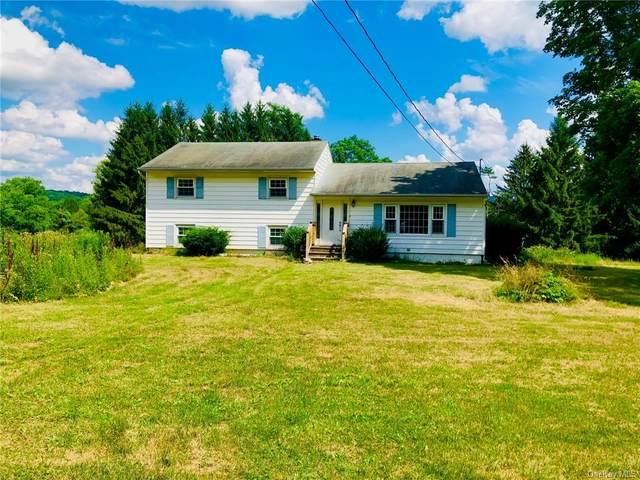 150 Verbank Village Road, Verbank, NY 12585 (MLS #H6054491) :: Frank Schiavone with William Raveis Real Estate