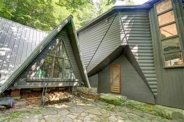 121 Jehu Mountain Road, Hancock, NY 13783 (MLS #H6054515) :: Frank Schiavone with William Raveis Real Estate