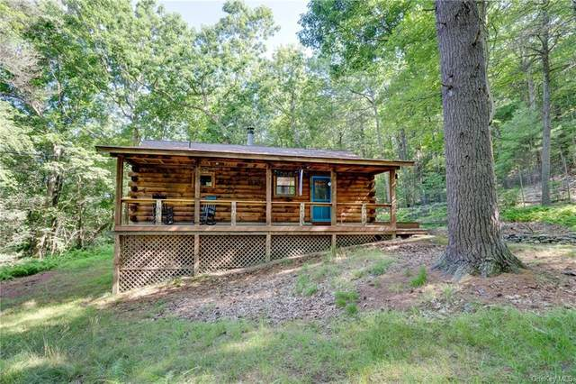 201 Bee Hollow Road, Shohola, NY 18458 (MLS #H6054524) :: Frank Schiavone with William Raveis Real Estate