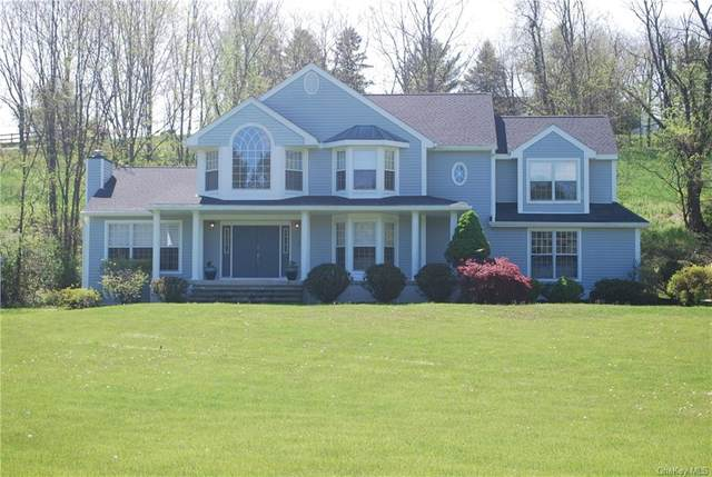 2 Hilee Road, Rhinebeck, NY 12572 (MLS #H6054531) :: Frank Schiavone with William Raveis Real Estate