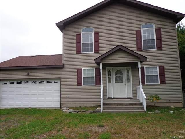 191 Lake Shore Drive E, Rock Hill, NY 12775 (MLS #H6054927) :: Kendall Group Real Estate | Keller Williams