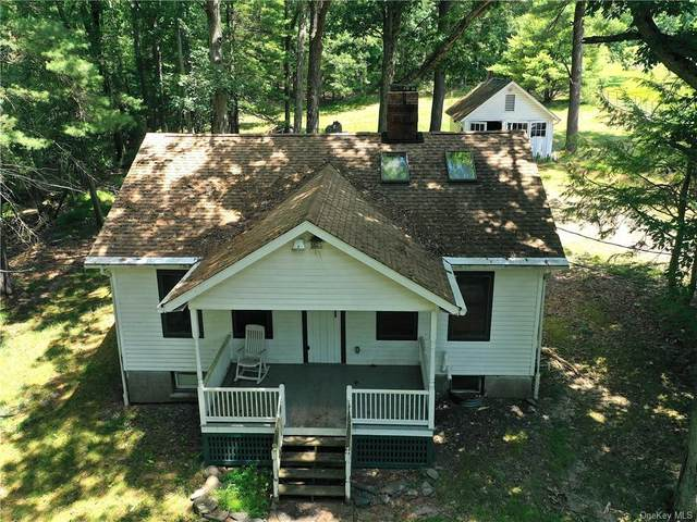 195 Lakeview Drive Road, Highland Lake, NY 12743 (MLS #H6055067) :: Frank Schiavone with William Raveis Real Estate