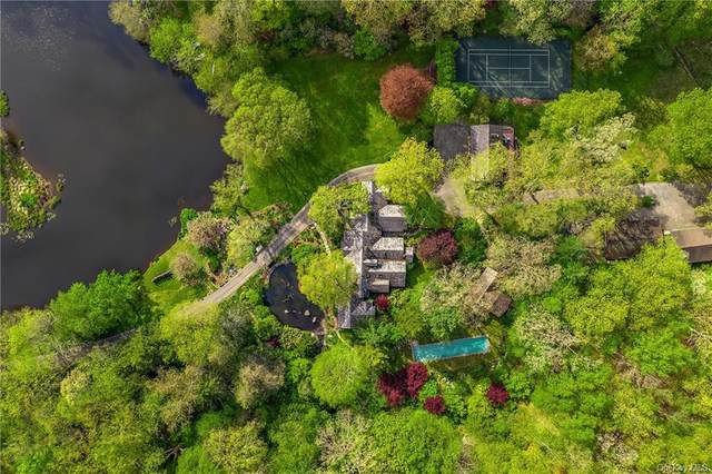 63 Lyndel Road, Pound Ridge, NY 10576 (MLS #H6055175) :: William Raveis Legends Realty Group