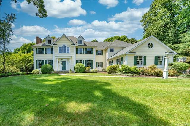142 Hirst Road, Briarcliff Manor, NY 10510 (MLS #H6055438) :: William Raveis Legends Realty Group