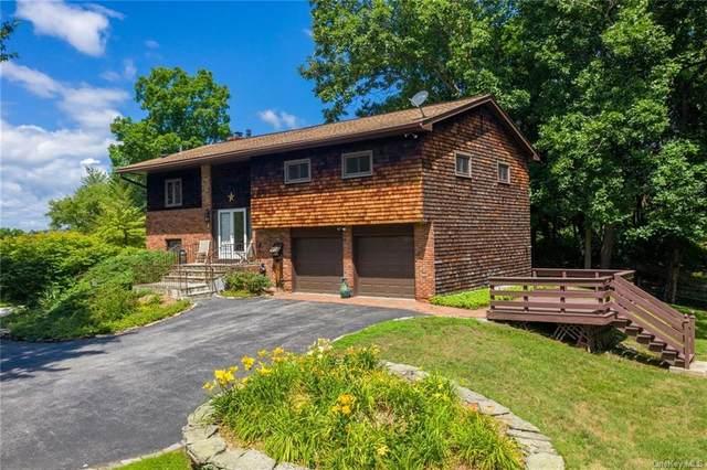19 Chaucer Road, Staatsburg, NY 12580 (MLS #H6055477) :: Nicole Burke, MBA   Charles Rutenberg Realty