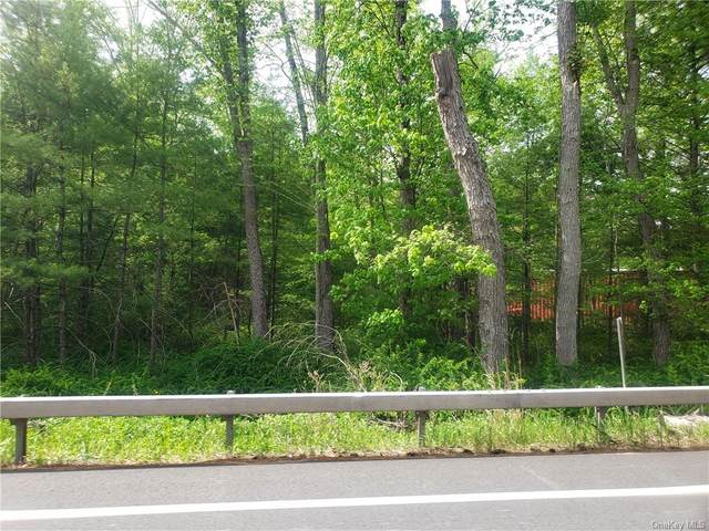 Crawford Road, Highland, NY 12528 (MLS #H6055483) :: Frank Schiavone with William Raveis Real Estate