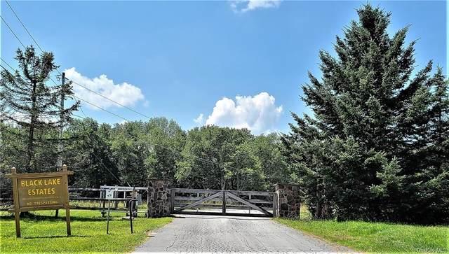 Lot 17 Lemons Brook Road, White Lake, NY 12786 (MLS #H6055724) :: Kendall Group Real Estate | Keller Williams