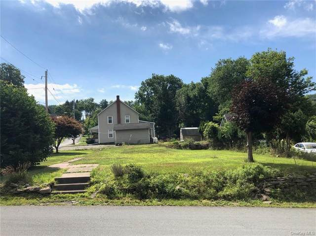 59 Erie Avenue, Narrowsburg, NY 12764 (MLS #H6055798) :: Frank Schiavone with William Raveis Real Estate