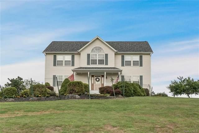51 Moffat Road, Washingtonville, NY 10992 (MLS #H6055836) :: Cronin & Company Real Estate