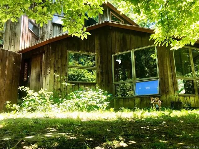 36 Bryant Pond Road, Putnam Valley, NY 10579 (MLS #H6055901) :: Mark Seiden Real Estate Team