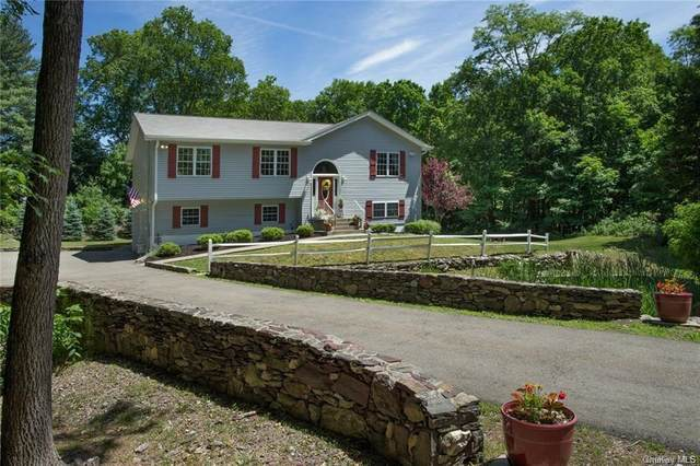 40 Barkit Kennel Road, Pleasant Valley, NY 12569 (MLS #H6055938) :: Frank Schiavone with William Raveis Real Estate