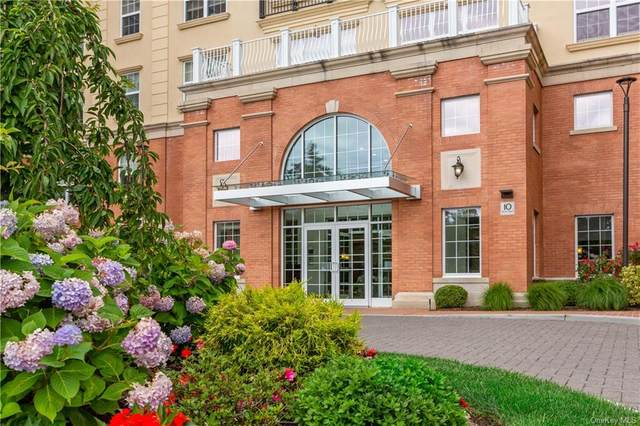 10 Byron Place #313, Larchmont, NY 10538 (MLS #H6056173) :: William Raveis Legends Realty Group