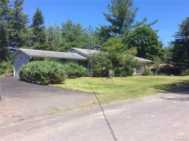 31 Melody Lake Drive, Monticello, NY 12701 (MLS #H6056274) :: Mark Boyland Real Estate Team