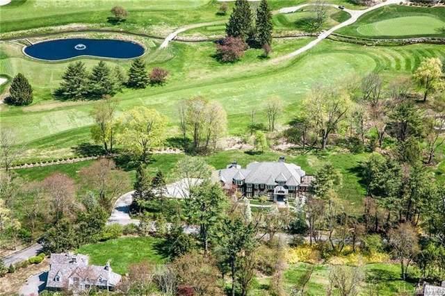 12 Petersville Road, Mount Kisco, NY 10549 (MLS #H6056386) :: Mark Boyland Real Estate Team