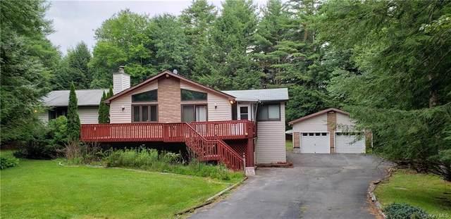 100 Gina Lane Tr 127, Bethel, NY 12720 (MLS #H6056602) :: Frank Schiavone with William Raveis Real Estate