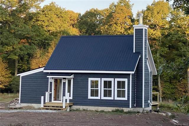 142 Maple Lane, Narrowsburg, NY 12764 (MLS #H6056713) :: Mark Boyland Real Estate Team