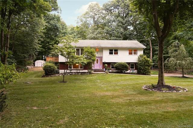 11 S Highland Avenue, Pearl River, NY 10965 (MLS #H6057034) :: Better Homes & Gardens Rand Realty