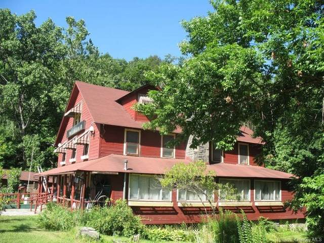 1774 State Route 97, Pond Eddy, NY 12770 (MLS #H6057125) :: Frank Schiavone with William Raveis Real Estate