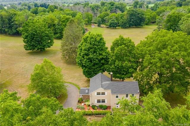 319 Amenia Union Road, Amenia, NY 12501 (MLS #H6057323) :: McAteer & Will Estates | Keller Williams Real Estate