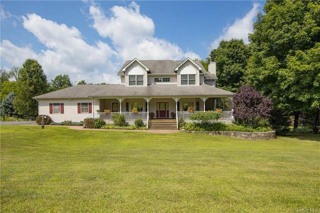 5 Catherine Court, Chester, NY 10918 (MLS #H6057351) :: Frank Schiavone with William Raveis Real Estate