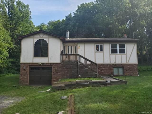 30 Berkshire Trail, Bethel, NY 12720 (MLS #H6057460) :: Frank Schiavone with William Raveis Real Estate