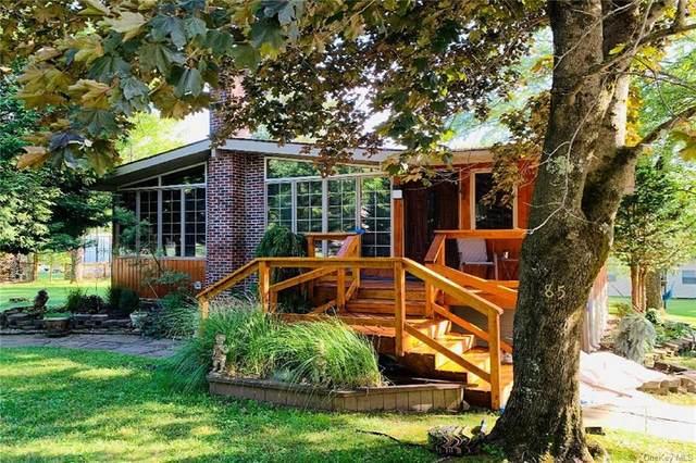 85 W Shore Road, Kauneonga Lake, NY 12749 (MLS #H6057505) :: Nicole Burke, MBA | Charles Rutenberg Realty