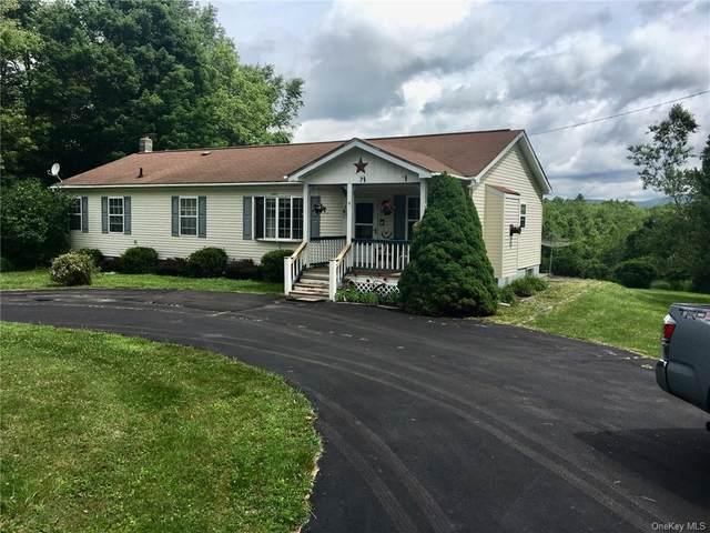 7 Morgan Road, Livingston Manor, NY 12758 (MLS #H6057620) :: Mark Boyland Real Estate Team