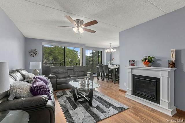 150 Overlook Avenue 7M, Peekskill, NY 10566 (MLS #H6057793) :: Mark Seiden Real Estate Team