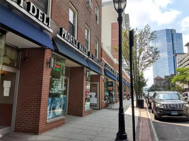 274 Main Street, White Plains, NY 10601 (MLS #H6057956) :: Frank Schiavone with William Raveis Real Estate