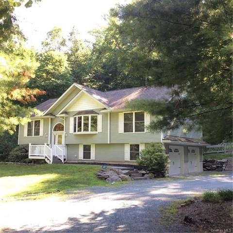 289 Upper Mongaup Road, Glen Spey, NY 12737 (MLS #H6057989) :: Frank Schiavone with William Raveis Real Estate