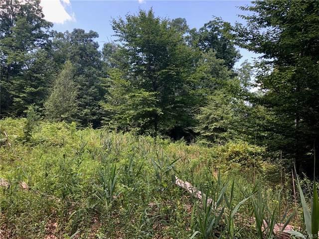 Indian Trail, Pine Bush, NY 12566 (MLS #H6057991) :: Cronin & Company Real Estate