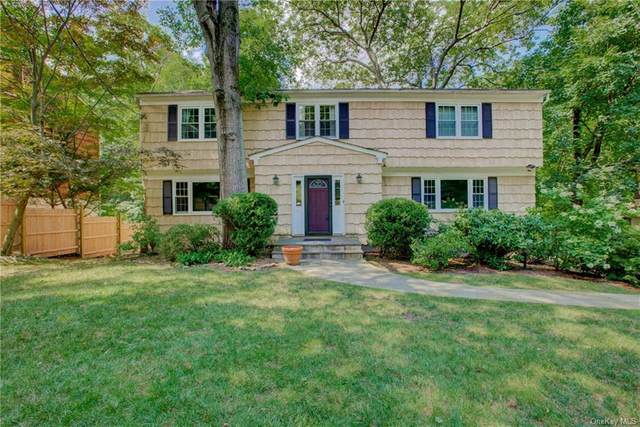 2 Detmer Avenue, Tarrytown, NY 10591 (MLS #H6058143) :: Frank Schiavone with William Raveis Real Estate