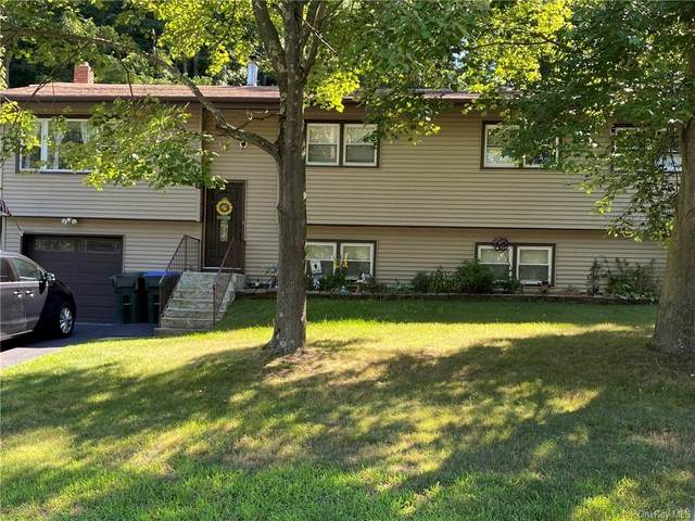 101 Sunfish Lane, Monroe, NY 10950 (MLS #H6058394) :: Cronin & Company Real Estate