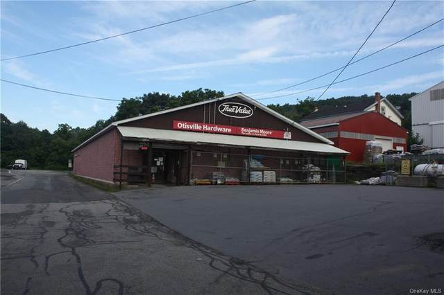 10 Wallace Street, Otisville, NY 10963 (MLS #H6058512) :: William Raveis Baer & McIntosh