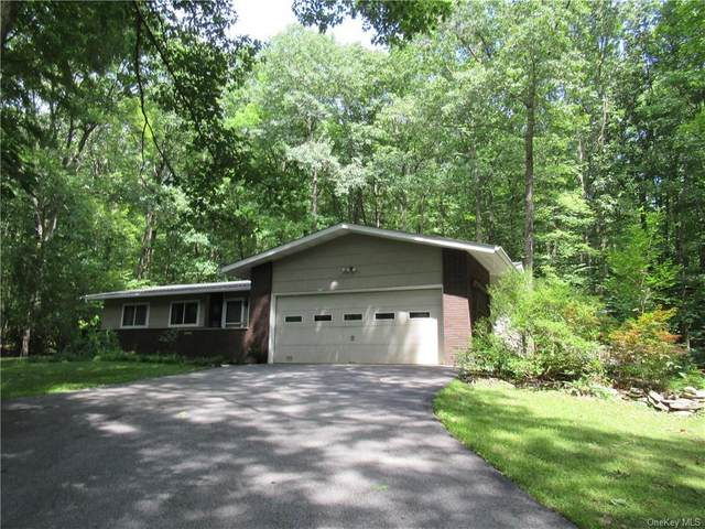 32 Wilkinson Hollow Road, Pawling, NY 12564 (MLS #H6058607) :: Frank Schiavone with William Raveis Real Estate