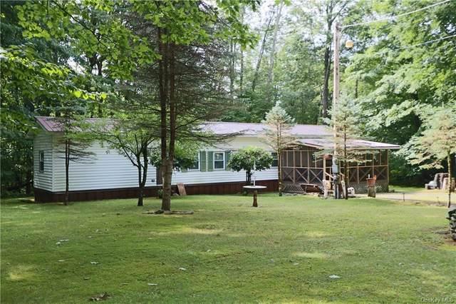 286 Elm Hollow Road, Livingston Manor, NY 12758 (MLS #H6058627) :: Mark Boyland Real Estate Team