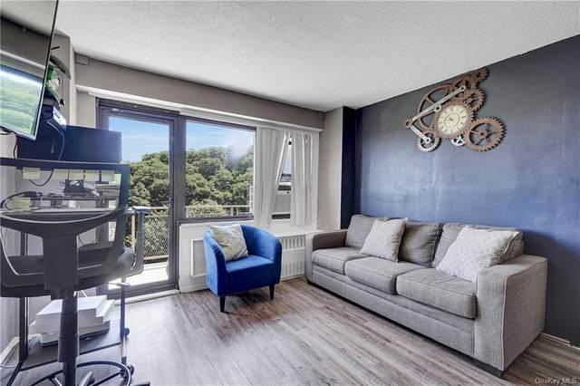 155 Ferris Avenue 12H, White Plains, NY 10603 (MLS #H6058716) :: Frank Schiavone with William Raveis Real Estate