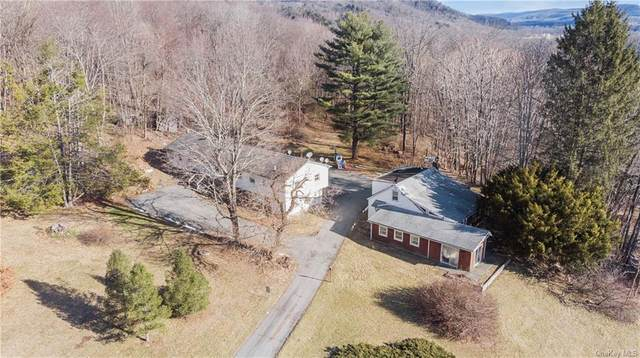677 Butts Hollow Road, Dover Plains, NY 12522 (MLS #H6058776) :: The Home Team