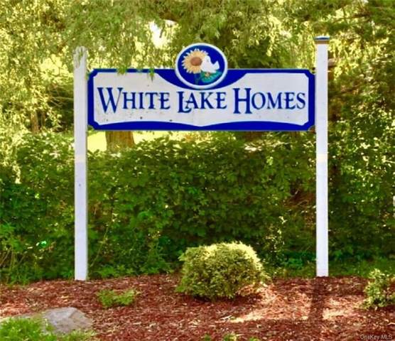4138 W Shore Drive, Kauneonga Lake, NY 12749 (MLS #H6058821) :: William Raveis Baer & McIntosh