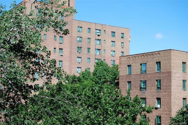1575 Unionport Road 4D, Bronx, NY 10462 (MLS #H6058904) :: Keller Williams Points North - Team Galligan