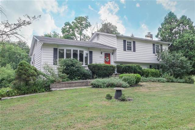 225 Craigville Road, Goshen, NY 10924 (MLS #H6059001) :: Cronin & Company Real Estate
