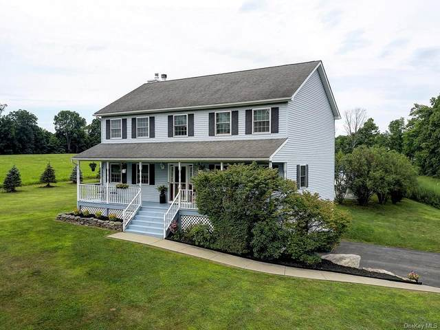 48 Crans Mill Road, Pine Bush, NY 12566 (MLS #H6059007) :: Frank Schiavone with William Raveis Real Estate