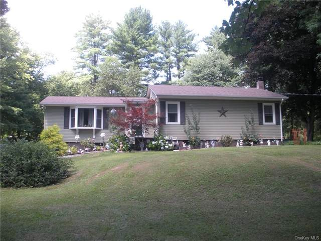 191 Hardenburgh Road, Pine Bush, NY 12566 (MLS #H6059018) :: William Raveis Baer & McIntosh