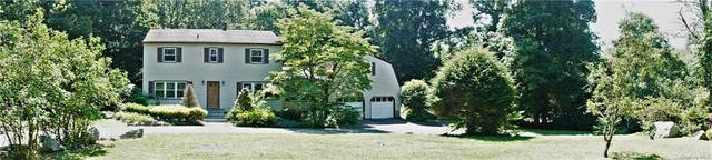 65 Goldin Boulevard, Walden, NY 12586 (MLS #H6059089) :: Frank Schiavone with William Raveis Real Estate