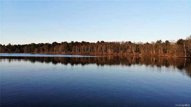 Canterbury Court, White Lake, NY 12786 (MLS #H6059095) :: Signature Premier Properties