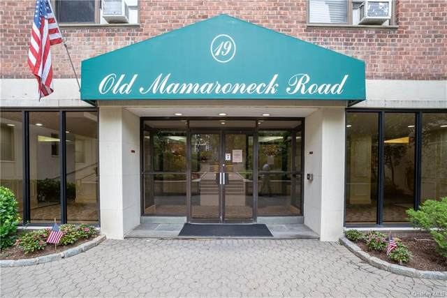 19 Old Mamaroneck Road 2 E, White Plains, NY 10605 (MLS #H6059096) :: Mark Seiden Real Estate Team