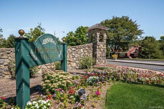 46 The Rise, Warwick, NY 10990 (MLS #H6059193) :: Cronin & Company Real Estate